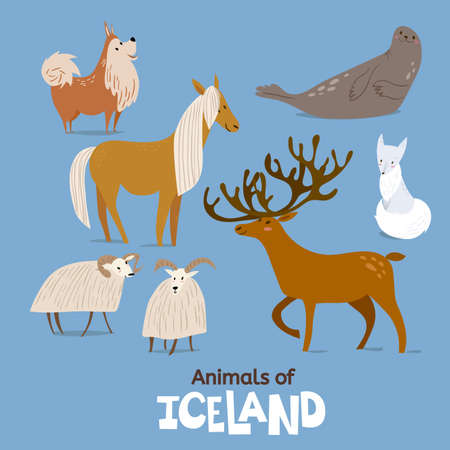 Animals of Iceland in flat modern style design.