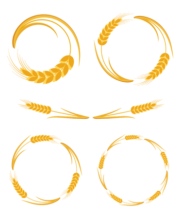 Ears Wheat, round frames set, isolated on white background