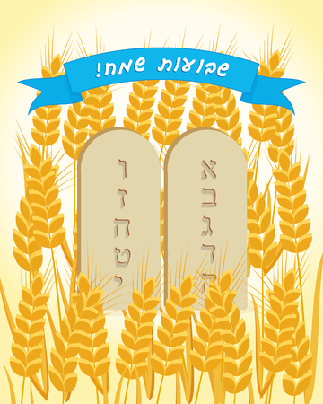 Jewish holiday of Shavuot, stone tablets and ears wheat, greeting inscription hebrew - Happy Shavuot on blue ribbon banner Vector illustration.