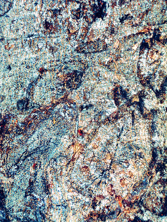 Bark of tree, blue woody abstract background, texture of tree bark. Raster illustration Stock Photo