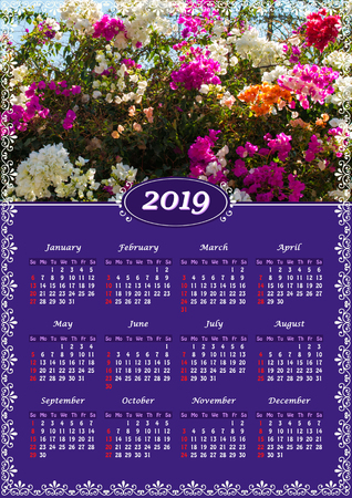 Yearly wall calendar, 2019 year of the year with a single page calendar, A3 size. Flowering multicolor Bougainvillea