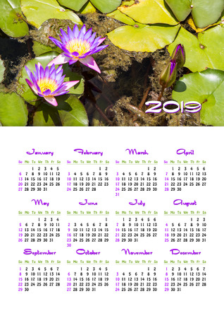 Yearly wall calendar, 2019 year of the year with a single page calendar, A3 size. Nymphaea nouchali