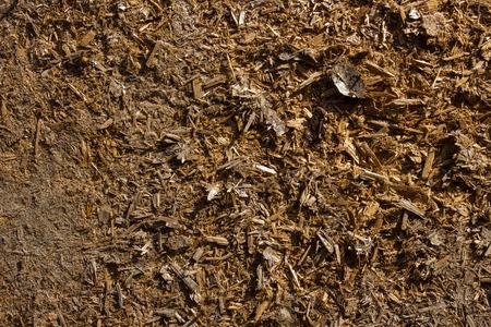 brown: wooden brown background