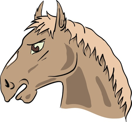 colorful illustration with horse's head for your design Vector