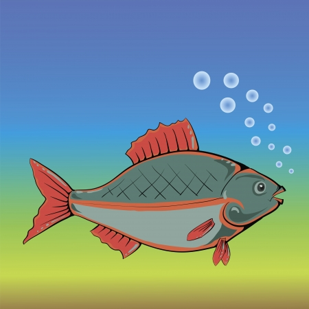 colorful illustration with fish for your design Stock Vector - 17247227