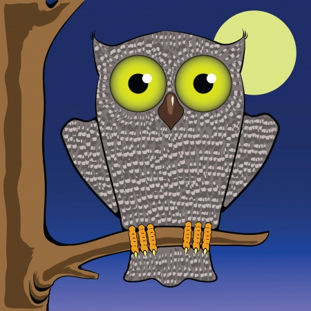colorful illustration with owl and moon for your design Vector