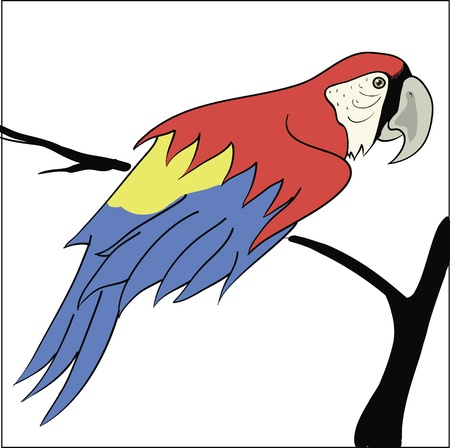 colorful illustration with parrot sitting on a branch for your design illustration