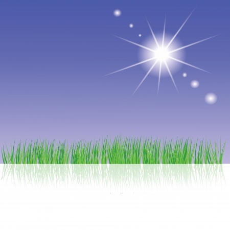 colorful illustration with  green grass for your design Vector