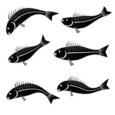 illustration with fishes for your design Vector