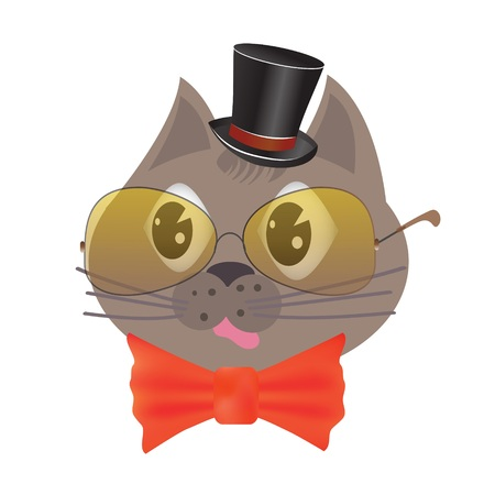 colorful illustration with smart cat for your design
