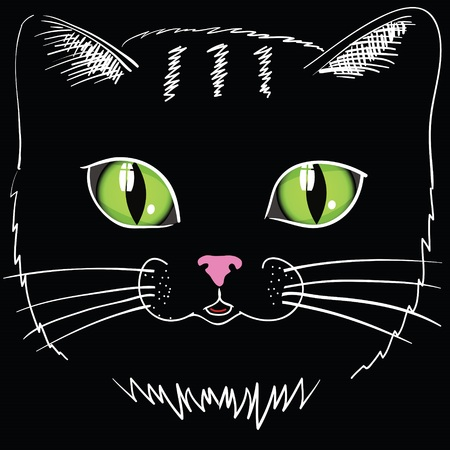 pampered: colorful illustration with black cat head Illustration