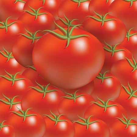 colorful illustration with red tomato background for your design