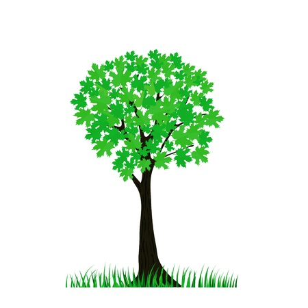 colorful illustration with green tree for your design illustration