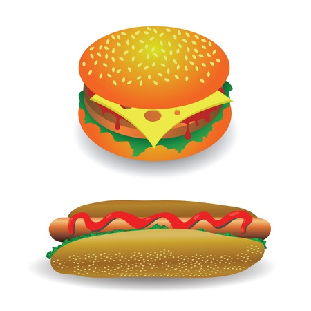 colorful illustration with hot dog and hamburger  for your design illustration