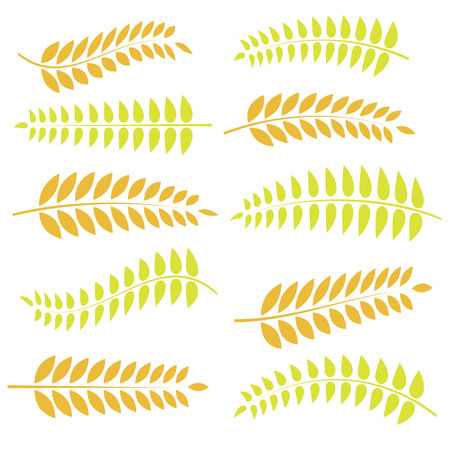 colorful illustration with autumn leaves on a white background Vector