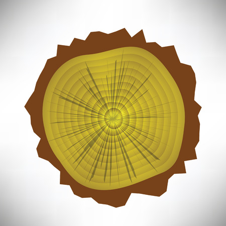 colorful illustration with tree rings on a white  background Vector