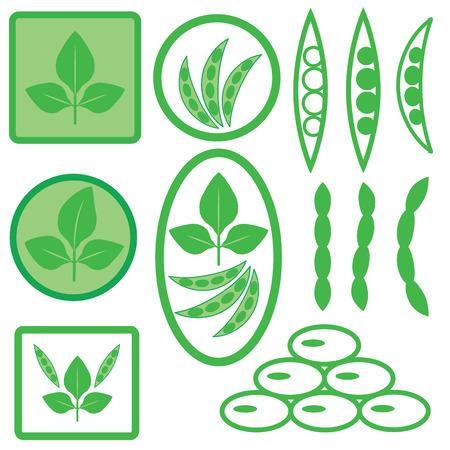 soya: colorful illustration with soya icons on white background