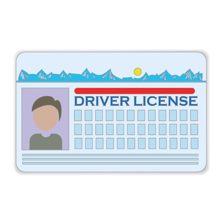 driver license: colorful illustration with driver license  on a white background