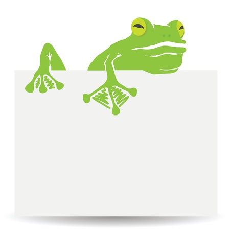 single eyed: colorful illustration with green frog and sheet of paper on white background Stock Photo