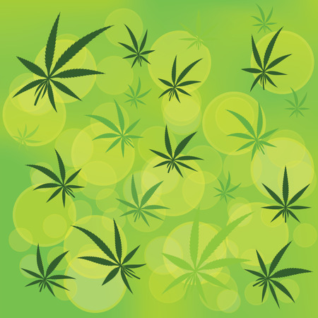 cannabis sativa: colorful illustration  with  cannabis icons on green blurred background