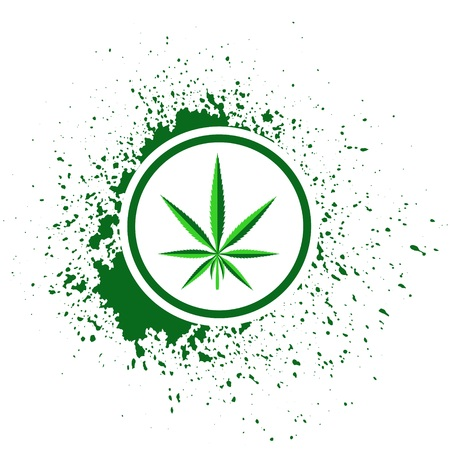 recreational drug: colorful illustration  with  cannabis  on white background