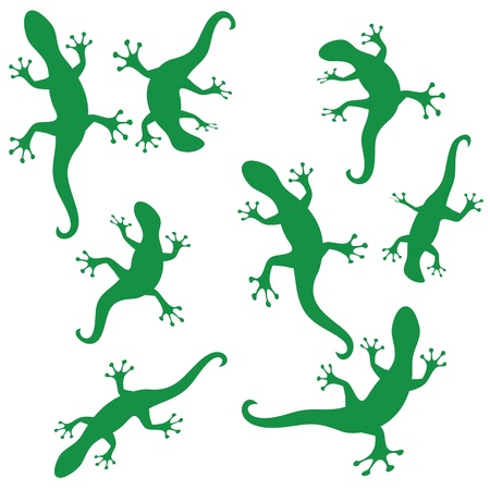 illustration  with green silhouettes of salamander on white background Stock Photo