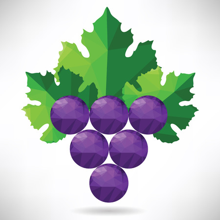colorful illustration  with abstract grapes on white background