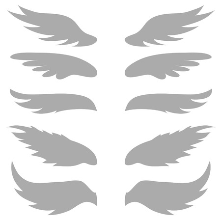 bird  celtic: illustration  with  wings silhouettes on white  background
