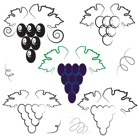 peasant household: colorful illustration  with abstract grapes on white background