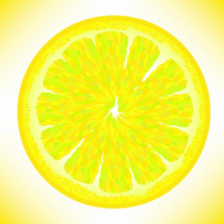 sectioned: Slice of Fresh Yellow Lemon Isolated on White Background. Illustration