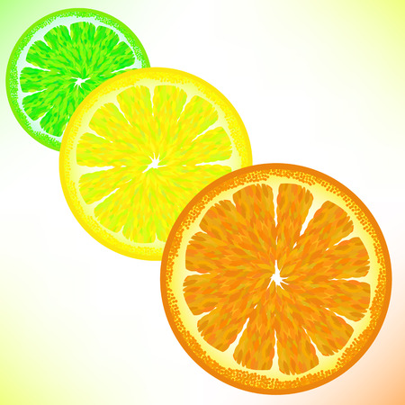 citric: Lime Lemon Orange Isolated on White Backgroud. Illustration