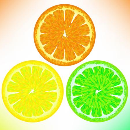 sectioned: Orange Lemon Lime Isolated on White Background
