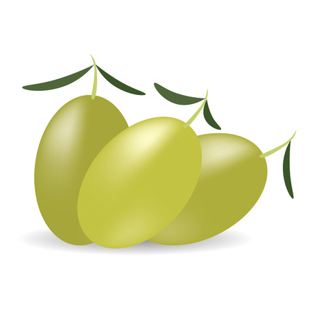 vegetal: Green Olives with Leaves Isolated on White BAckground. Illustration