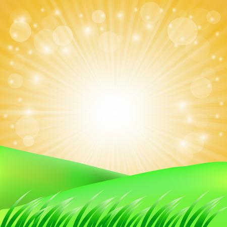 green hills: Summer Landscape. Green Grass Green Hills on Sun Background.