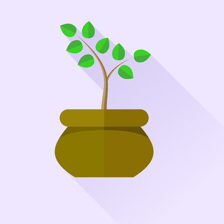 germinate: Green Plant in Brown Pot Isolated on Blue Background