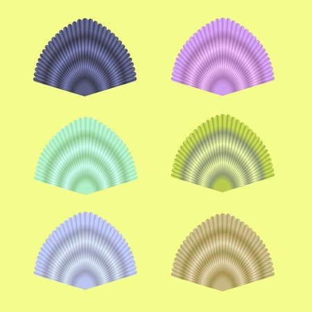 cockle: Exotic Seashell Collection Isolated on Yellow Background