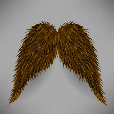 sideburn: Brown Hairy Mustache Isolated on Grey Background.