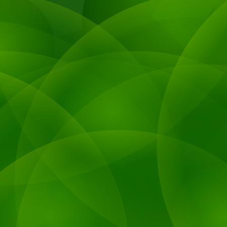 light green background: Abstract Light Green Background. Abstract Wave Green Pattern. Illustration
