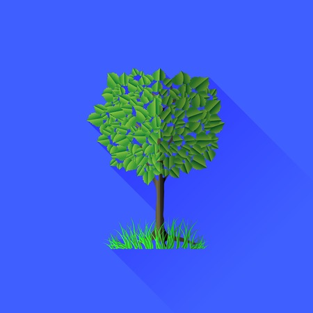 tree isolated: �rbol verde sobre fondo azul. La larga sombra.