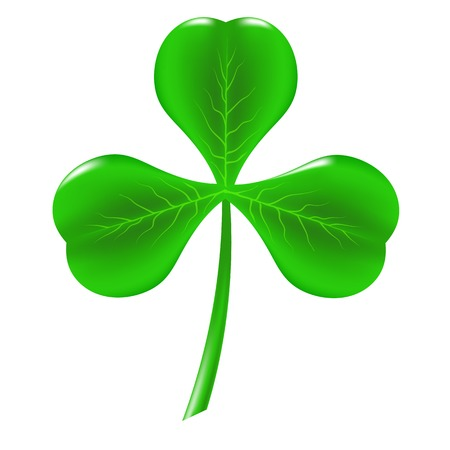 Green Clover Isolated on White Background. Symbol of Patricks Day.