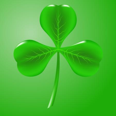 Green Clover Isolated on Green Background. Symbol of  St. Patricks Day. Irish Shamrock Icon.