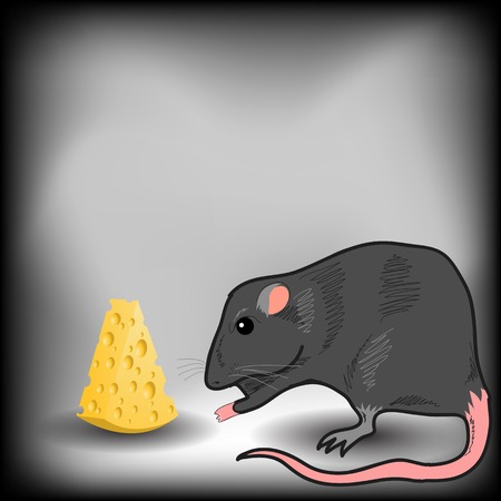tiptoe: Rat and Piece of Cheese on Grey Background