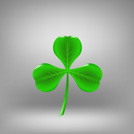 sybol: Green Leaf Clover Isolated on Grey Background