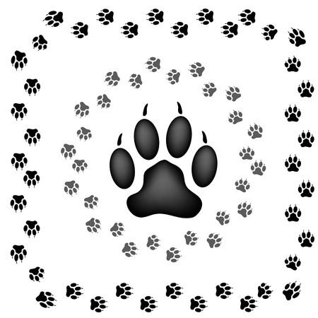 Animal Paw Prints Isolated on White Background