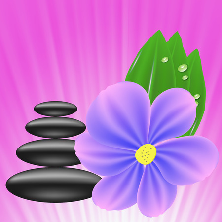 stones with flower: Stones and Blue  Flower on Pink Wave Background. Set of Stones for SPA