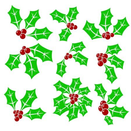 aquifolium: Set of Holly Berry Icons Isolated on White Background