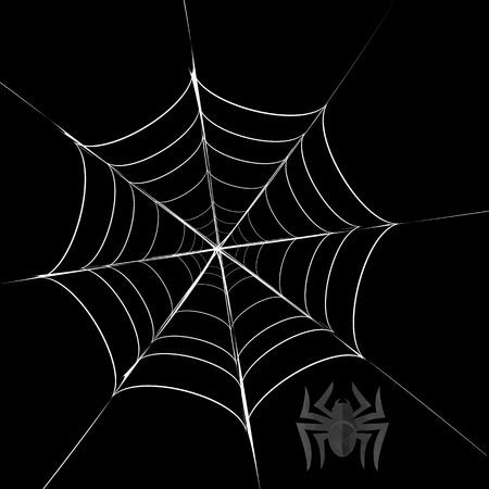 cobweb: Polygonal Grey Spider and Her  Cobweb on Black Background Illustration