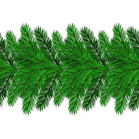 green branches: Fir Green Branches Isolated on White Background