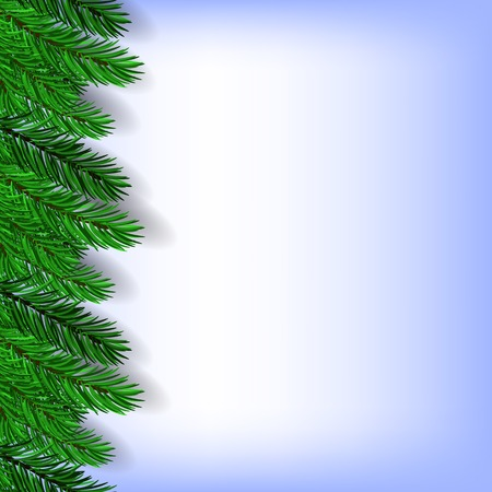 green branches: Fir Green Branches Isolated on Blue Background