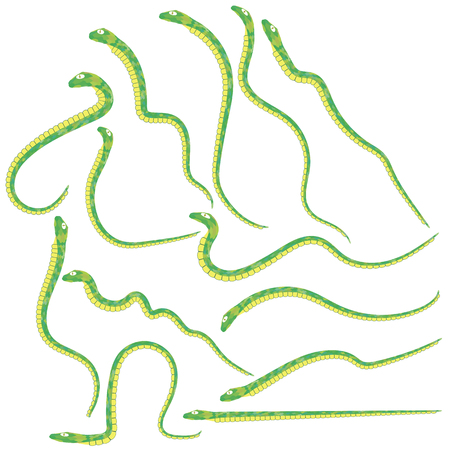 large group of animals: Set of Green Snakes Isolated on White Background.